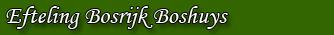 Efteling Bosrijk Boshuys