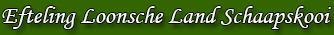 Efteling Loonsche Land Schaapskooi 12 personen